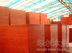 长海县必威体育娱乐官网建筑模板批发